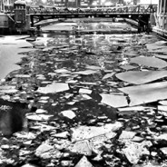 January 19, 2014 – Chicago River