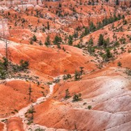 Bryce Canyon 01 – March 02, 2014